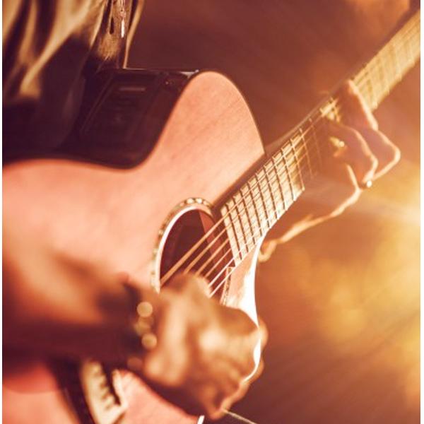 Stichting MOL Acoustisch gitaarles Leiderdorp
